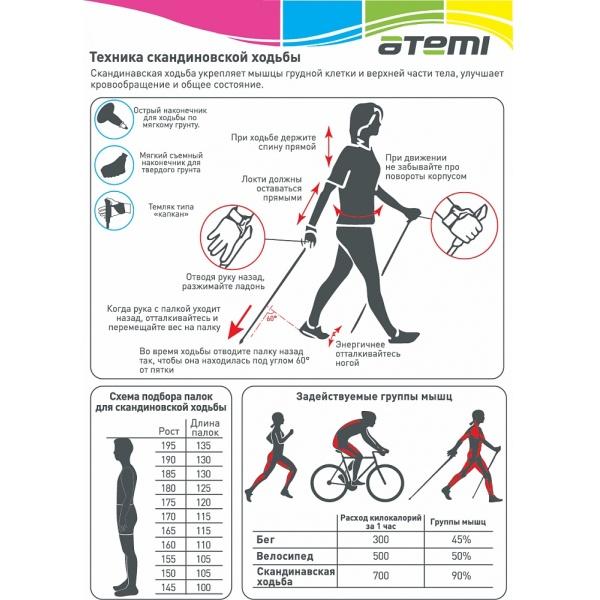 Палки для скандинавской ходьбы Atemi ATP-02, стекловолокно, 130 см