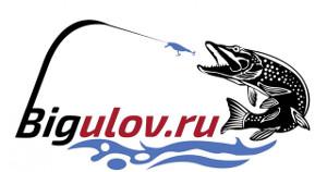 Bigulov